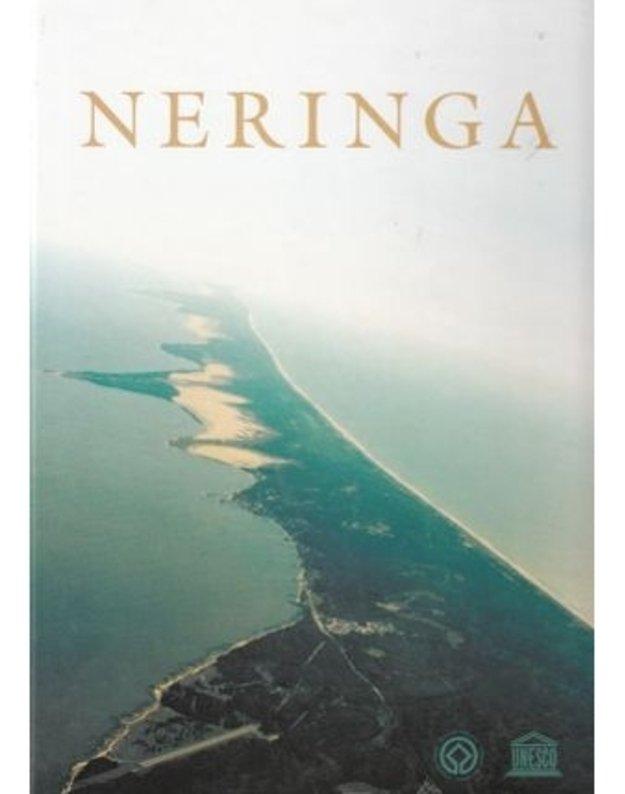Neringa. Albumas 2001 - sud. Kęstutis Demereckas